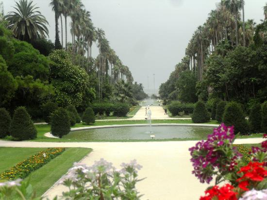 Jardin fran ais picture of le jardin d 39 essai du hamma Le jardin francais