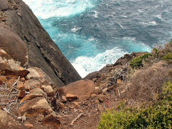 West Cape Howe National Park: Straight down to the sea, don't stand too close!