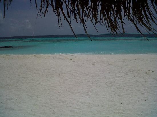 LUX* South Ari Atoll: La plage