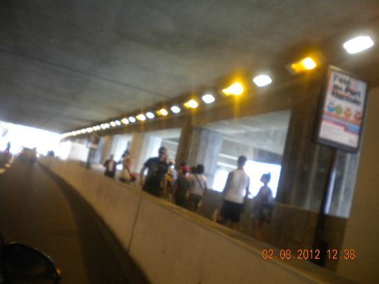 Princess Grace Botanical Garden: Tunnel où passe le tour de Monaco de F1.