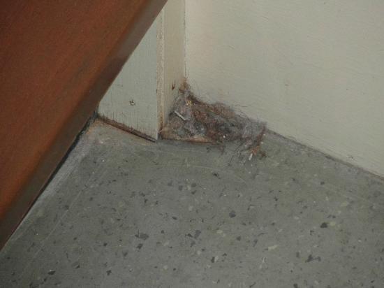 ذا دريدنوت هوتل: The Dirt In The Toilet/Shower Room 