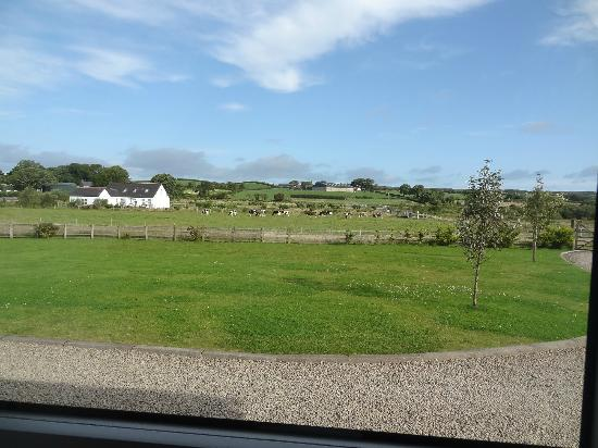 The Whins B&B : The view