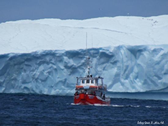 Iceberg Quest Ocean Tours Review