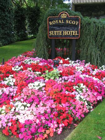 Royal Scot Hotel & Suites: view from sidewalk