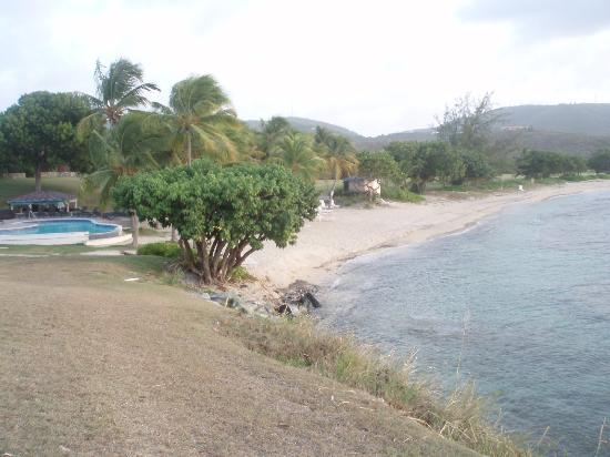 The Buccaneer -- St Croix: View from deluxe beachfront room patio
