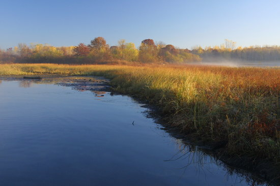 Minneapolis, MN: Springbrook Nature Center