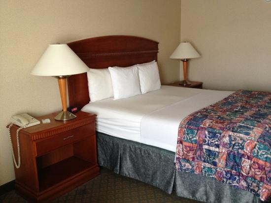 The Comfort Inn & Suites Anaheim, Disneyland Resort: king bed