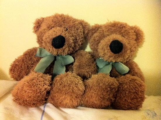 The Beech Tree Guest House: The two teds.