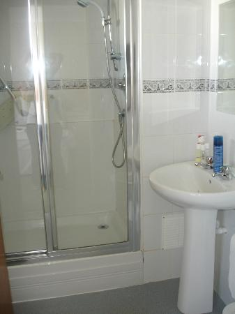 Barrowfield Hotel: Bathroom