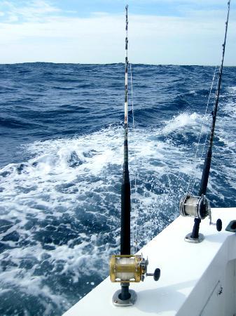 Deep sea fishing billede af punta cana fishing charters for Punta cana fishing charters
