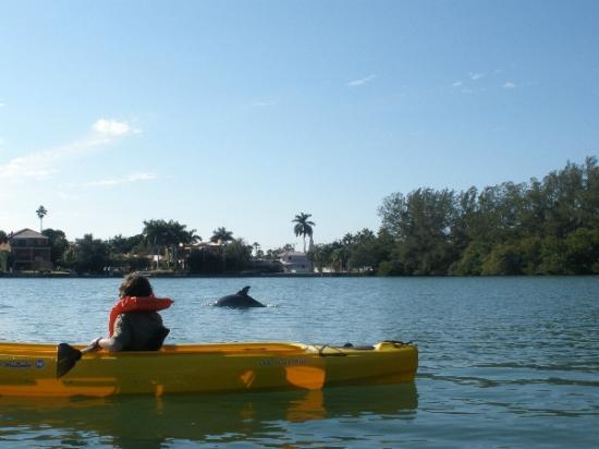 Bay & Gulf Adventures