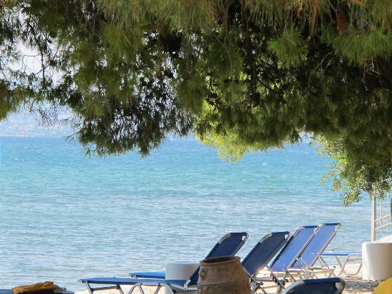 Negroponte Resort Eretria: VU PLAGE