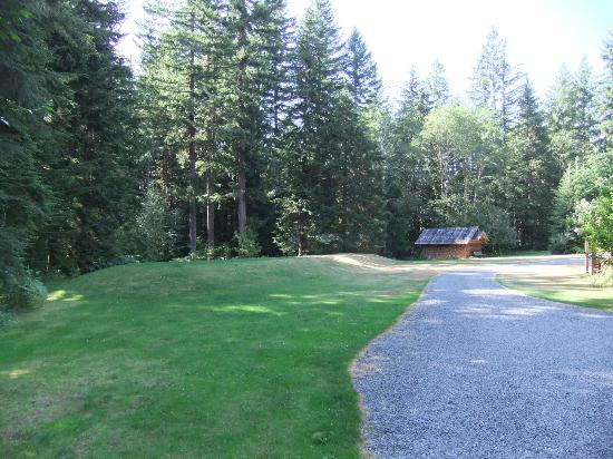 Almost Paradise Lodging: Partial view of grounds.