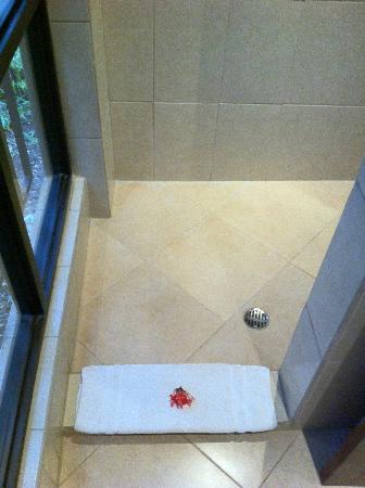 Mirador B&B: Walk in shower