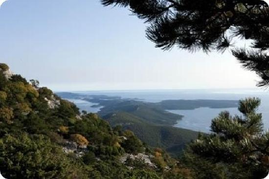 Lošinj Island, Croacia: getlstd_property_photo