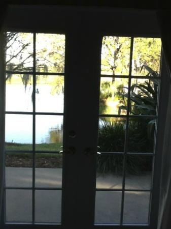 Villas of Grand Cypress: View from Room