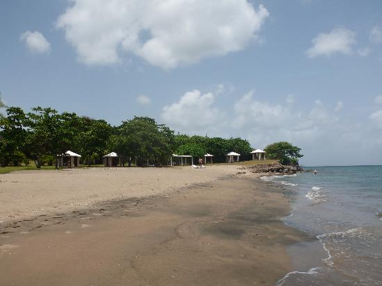 Montpelier Plantation & Beach: The beach