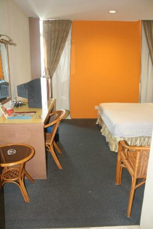 Aldy Hotel: room with carpet, but it is clean.