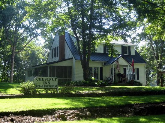 Chestnut Inn : The Inn