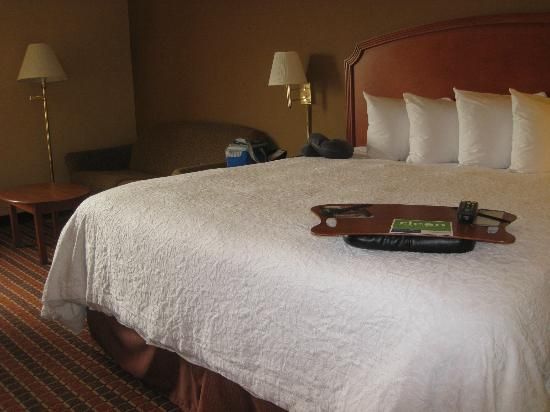 Hampton Inn Philadelphia-International Airport: Bed/Sofa about the same in rooms 518/601
