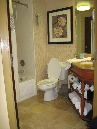 Hampton Inn Philadelphia-International Airport: Bathroom was same in rooms 518/601