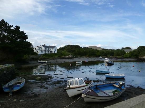The Heron's Cove: view of the B+B from the harbour