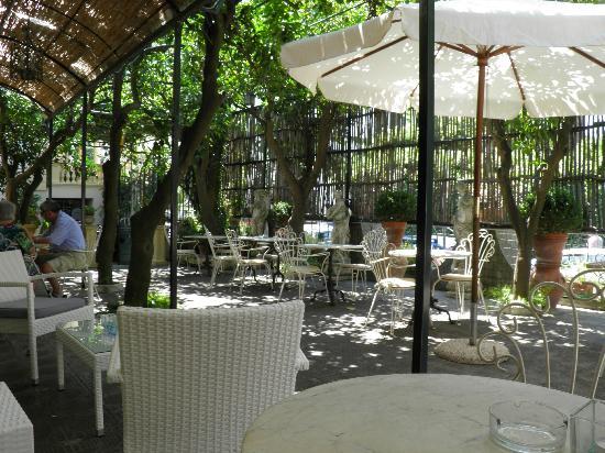 Hotel Villa Margherita: Sala/giardino