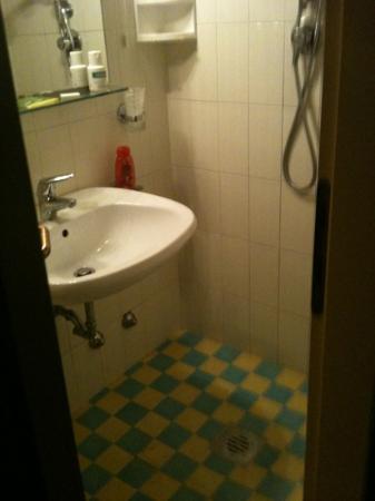 Hotel Gardenia: bagno e doccia scomodissima