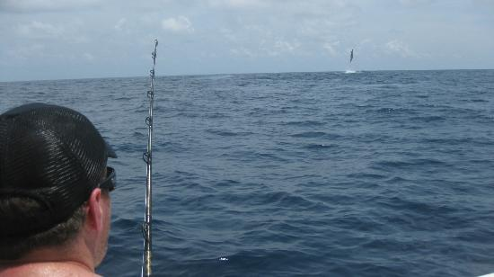 On The Fly Costa Rica Big Game Fishing : Marlin skying!