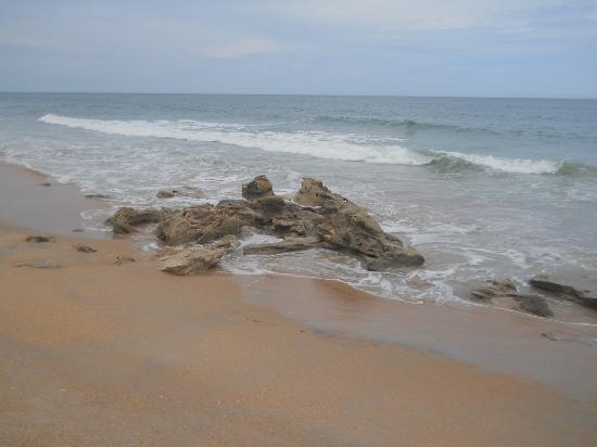 Washington Oaks Gardens State Park: coquina rock beach