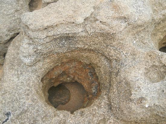 Washington Oaks Gardens State Park: Coquina rock hole
