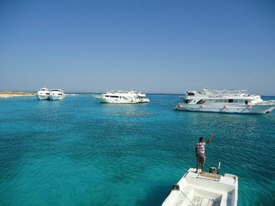 Sunny Days El Palacio Resort & Spa: Wycieczka