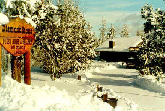 DiamondStone Guest Lodges: Snowed-in B&B. At elevation 4250', experience 4 seasons!