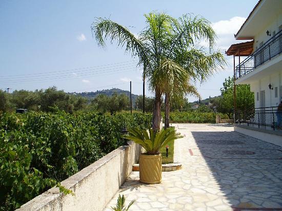 Litsa Studios & Apartments: view from behind litsa