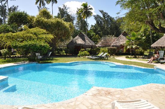 Hotel Hibiscus: Pool