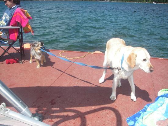 Cultus Lake Resort: DOCK