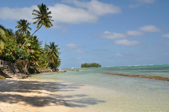 Hotel Hibiscus: Beach near hotel