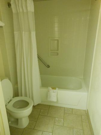 BEST WESTERN PLUS Inn at the Vines: shower & tub