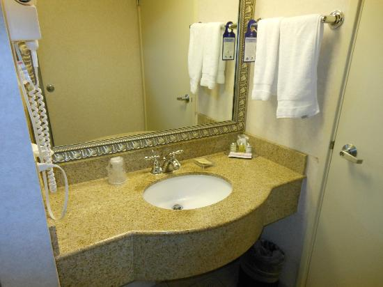 Best Western Plus Inn At The Vines : sink area