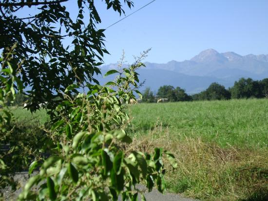 The Barns Dans Les Pyrénées : View from the dining terrace