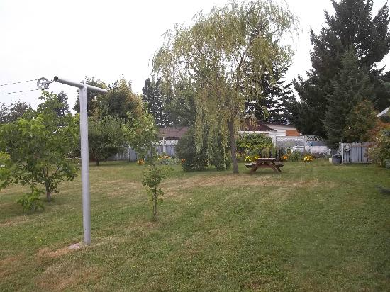 Mountain View Inn: back yard - field with picnic table, garden & fruit trees