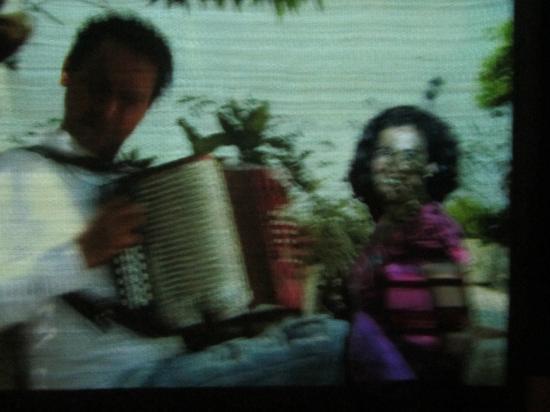 Caribische Museum: El Vallenato y su mágico acordeón (En el salón de la música)