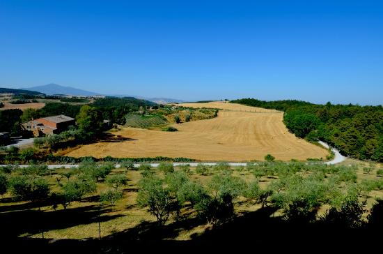 Villa Poggiano: View from the Patio