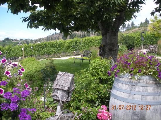 Hillside Winery: Gardens, cool and shady