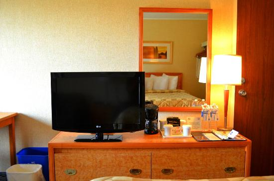 Comfort Inn - Dartmouth: TV