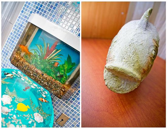 Coqui del Mar Guest House: El Pescado...And yes, those are fishes in the toilet tank.