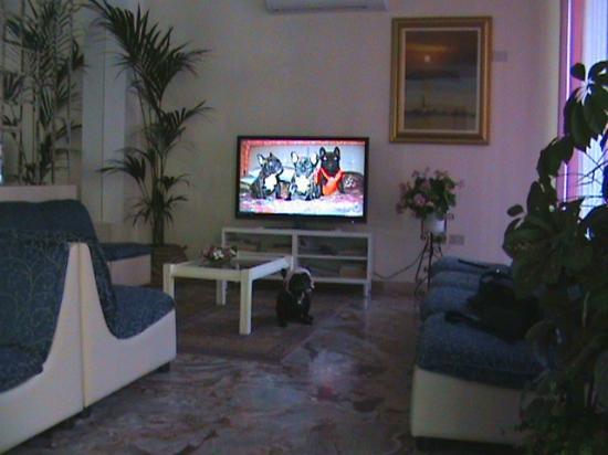 Delizia Hotel : sala tv max t v