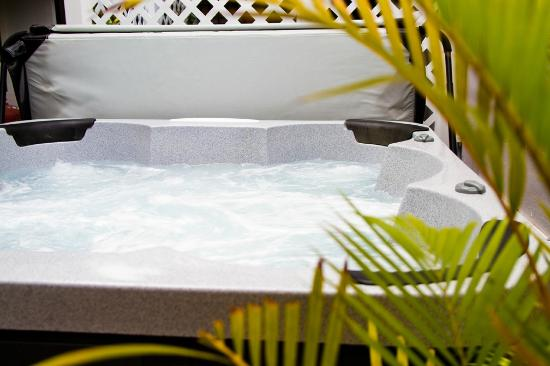 Coqui del Mar Guest House: Our latest addition....Jacuzzi