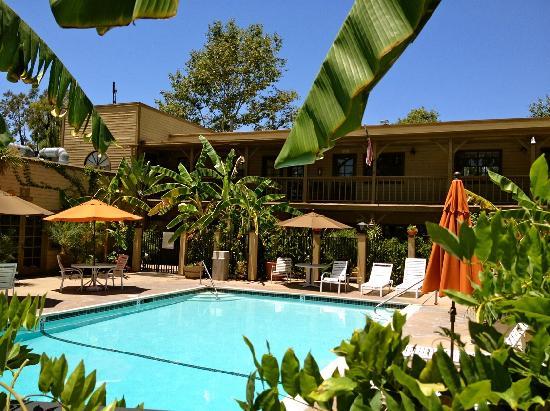 Circle RV Resort: Resort Pool