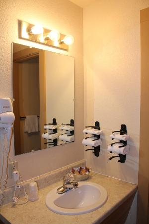 Battle Creek Lodge: Bathroom/Vanity area